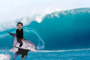 イルカに乗って津波から逃げる照英の画像ください