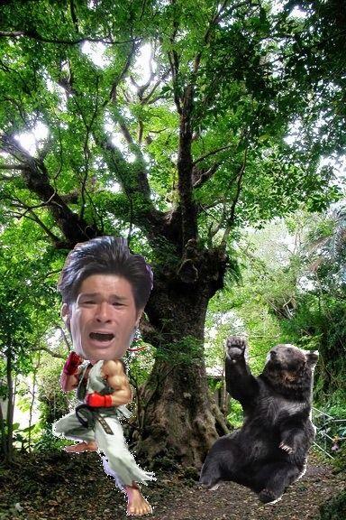 照英が大きな木の下でクマを倒している画像をください