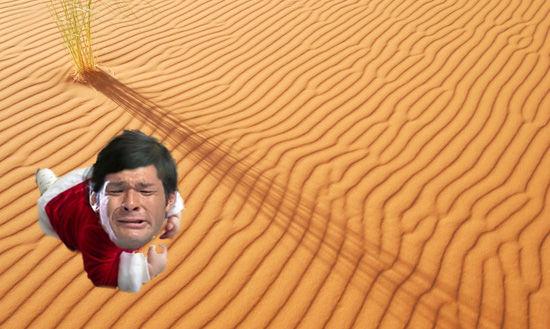 照英が泣きながらサハラ砂漠を這っている画像ください